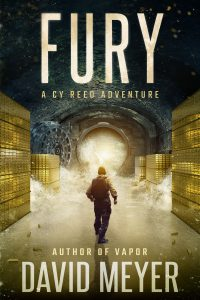 Fury by David Meyer